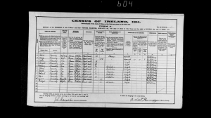 ireland census 1911