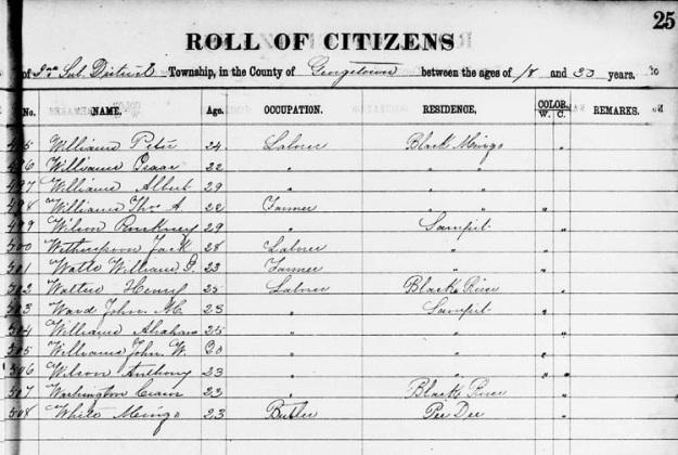 TA Williams Georgetown militia 1869